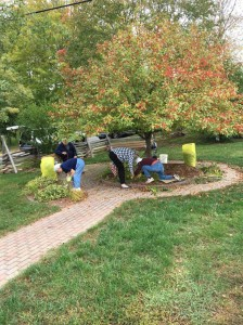 park-clean-up-ladies-10-8-2016