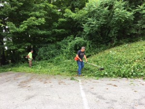 June 23, 2018 - Weed Whacking