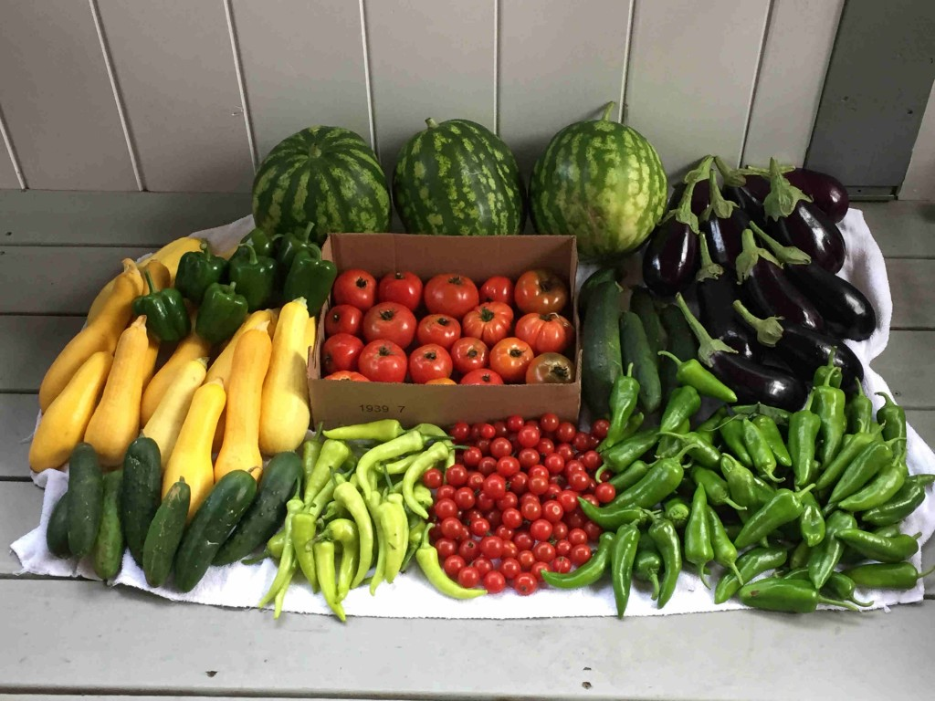 Crops harvested Sept. 15 and 17.